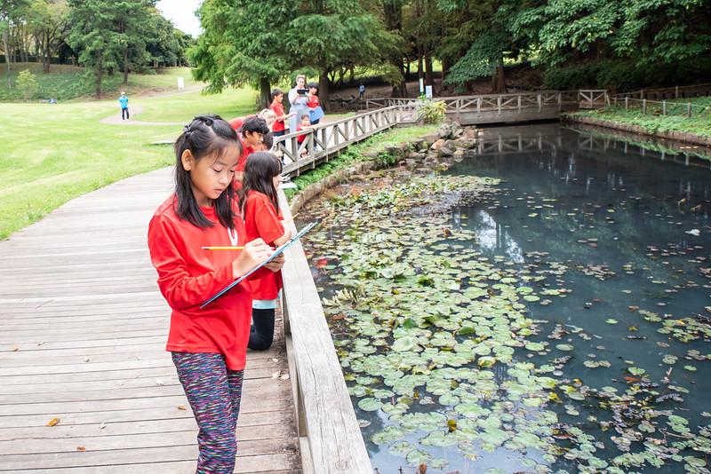 Grade 4-Negishi Park - Nature Observation-ELP_2852-2018-19.jpg