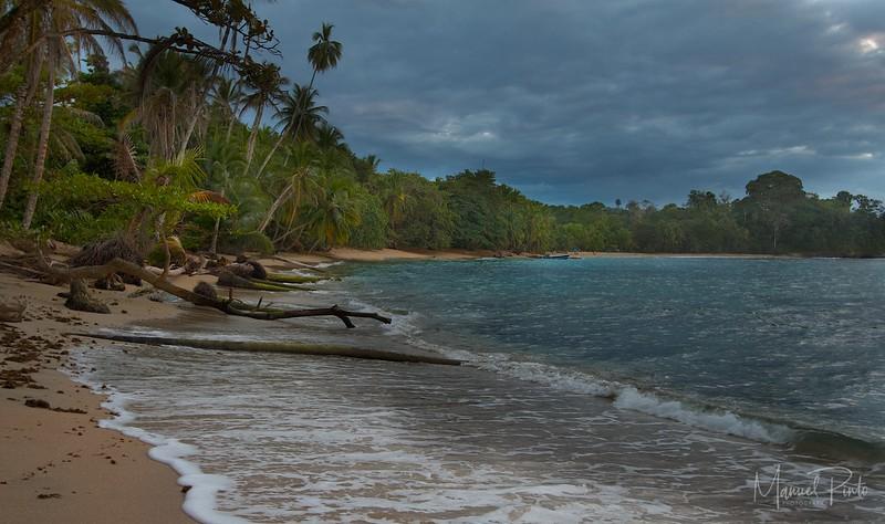 Playa Arrecife, Punta Uva
