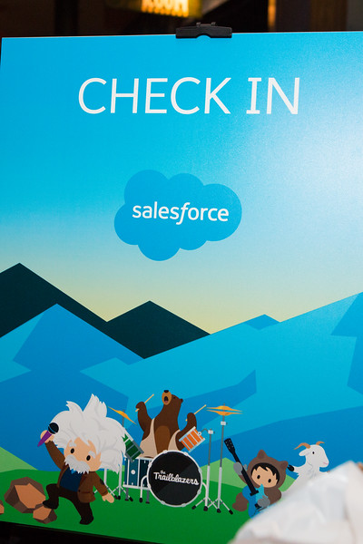 salesforce-060.jpg
