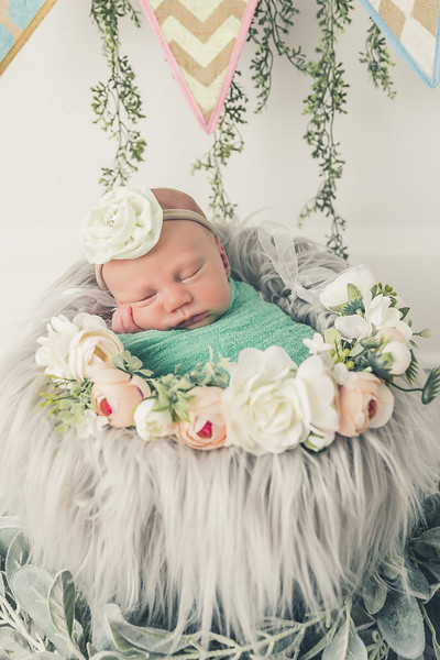 rockford_newborn_photography_O015.jpg
