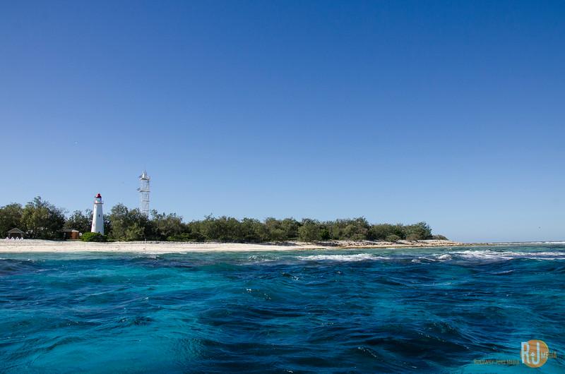 Australia-queensland-Lady Elliot Island-6058.jpg