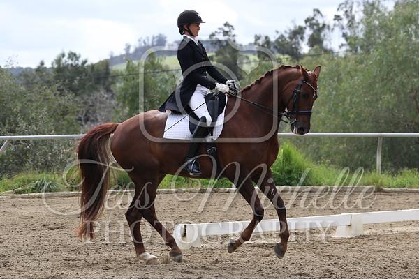 Spirit Equestrian March 2019