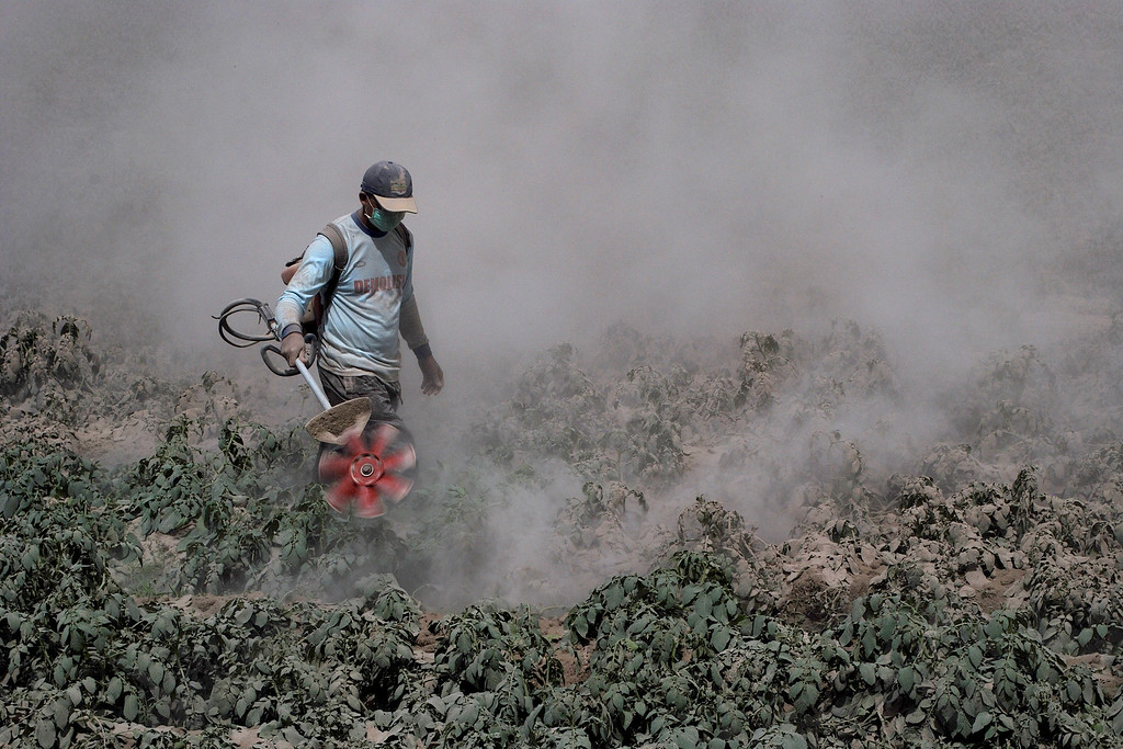 . A resident of Karo district uses a lawnmower to remove ash from his vegetable fields in North Sumatra on October 9, 2014, after an eruption by Mount Sinabung volcano.  AFP PHOTO / Sutanta  ADITYA/AFP/Getty Images