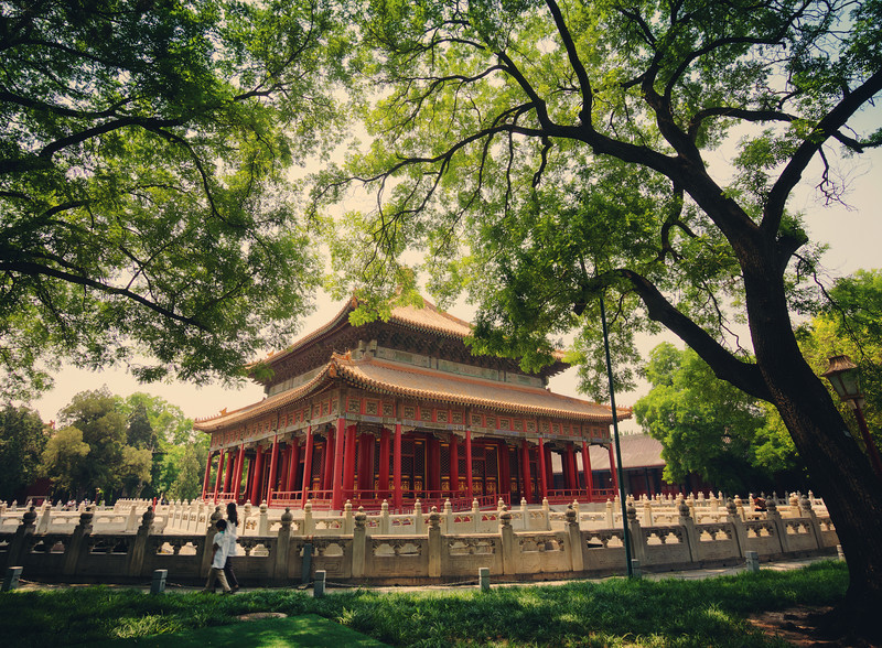 Trey-Ratcliff-China-2013-trees.jpg
