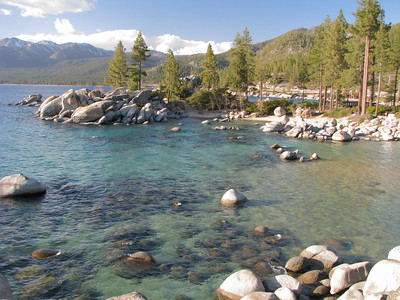 Sand Harbor Scout