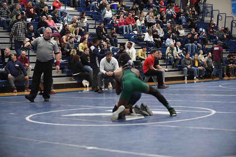 wrestling_2524.jpg