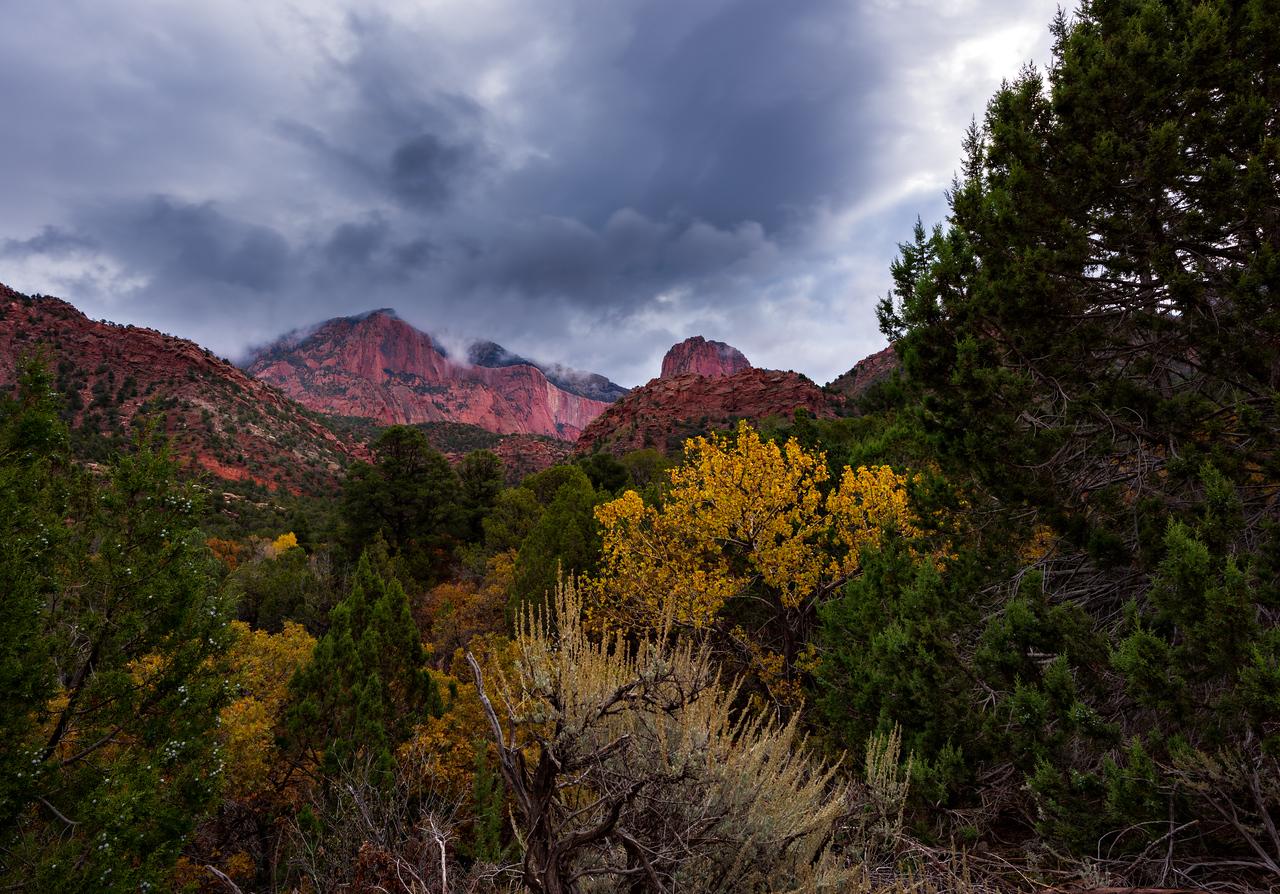 Kolob Canyons, Zion National Park