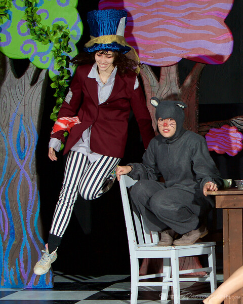 alice in wonderland 2014 20.jpg
