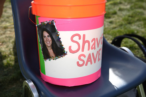 2014 Shave to Save