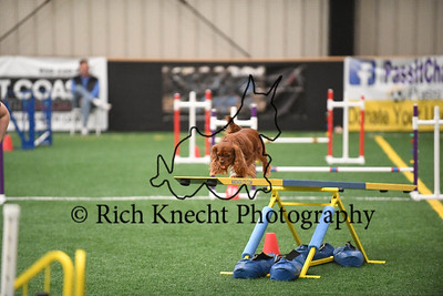 Gloucester County Kennel Club AKC Agility Trial April 8-9