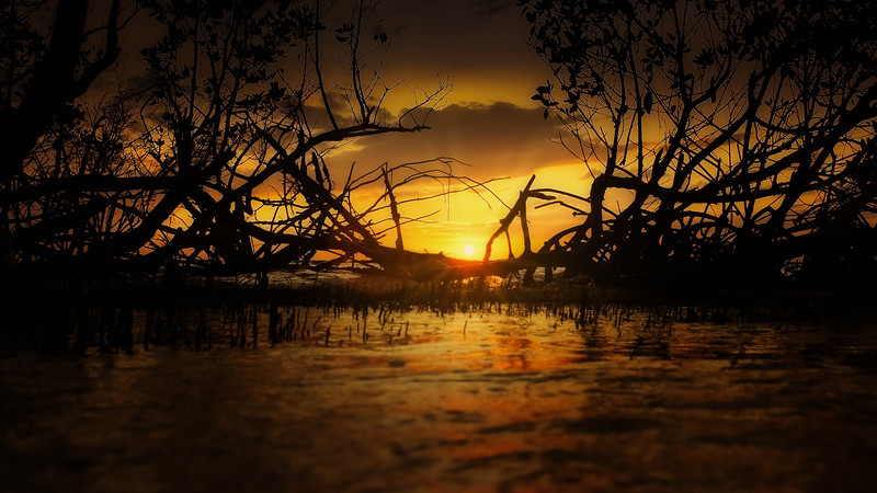 Sunrise and Sunset (28).jpg