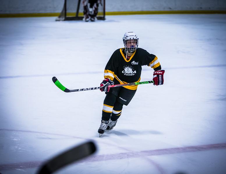 Bruins2-424.jpg