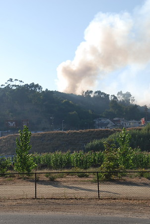 7/23 Elysian Park Fire