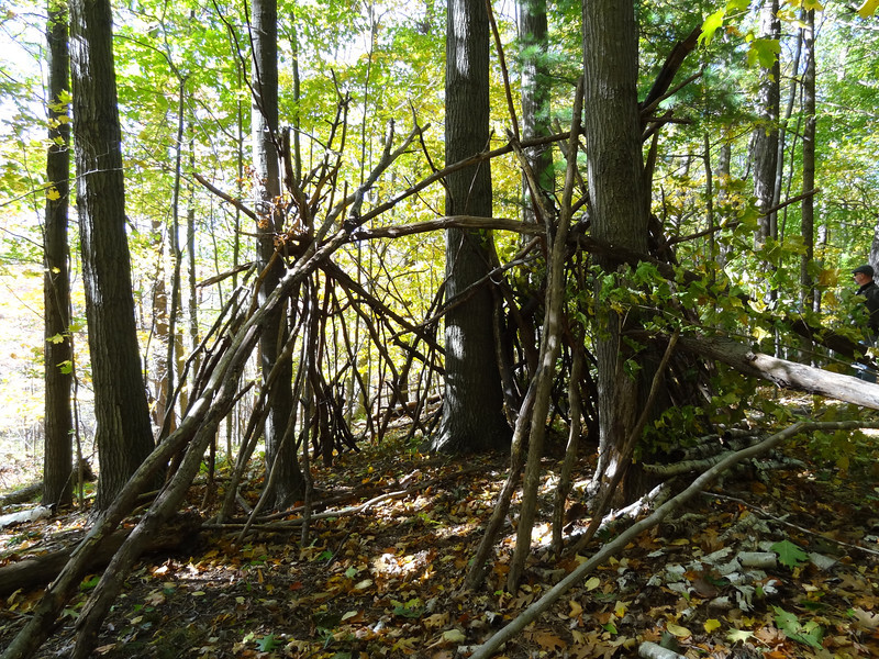 Replica of a small shelter built by the Native Americans. It would have been covered with branches.