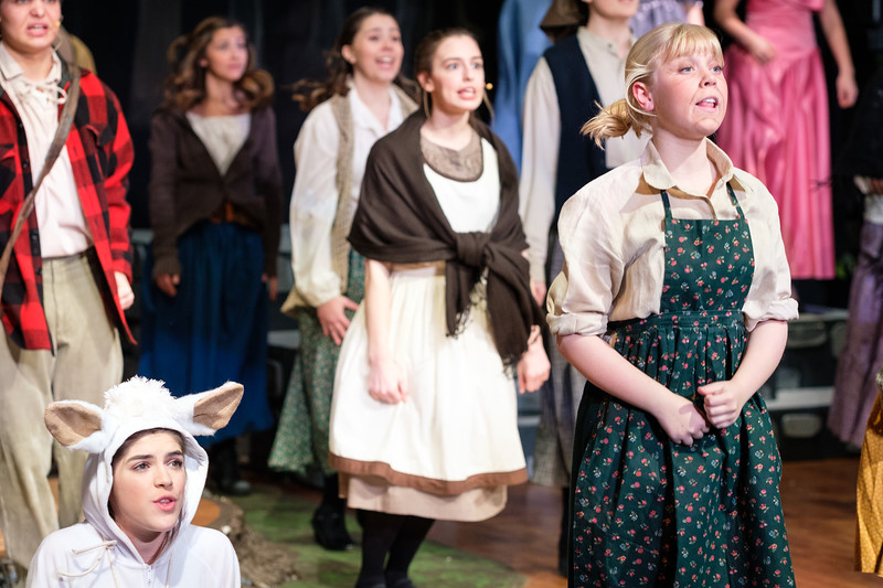 2018-03 Into the Woods Performance 0101.jpg