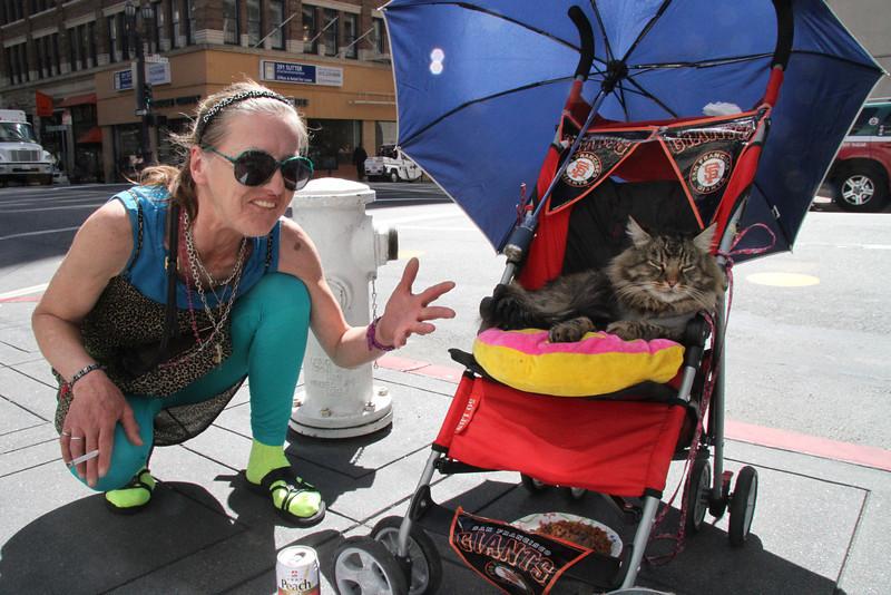 April 17 homeless kitty.jpg