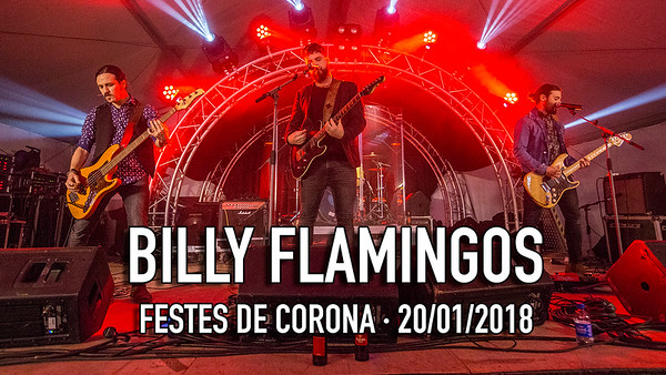 BILLY FLAMINGOS CORONA