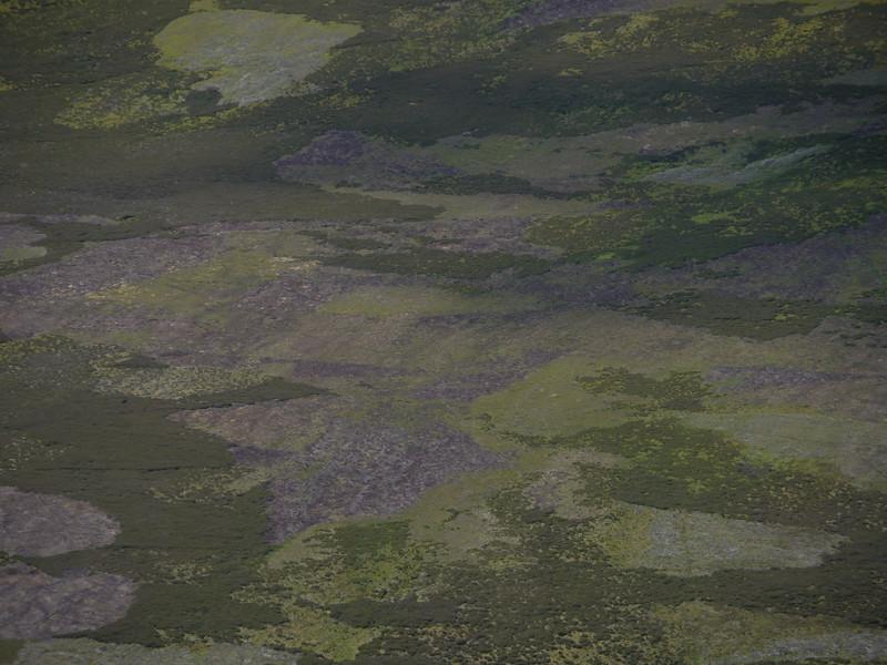 @RobAng Juni 2015 / Cock Bridge, Aboyne, Upper Deeside and Donsid, Scotland, GBR, Großbritannien, 588 m ü/M, 2015/06/27 11:38:30