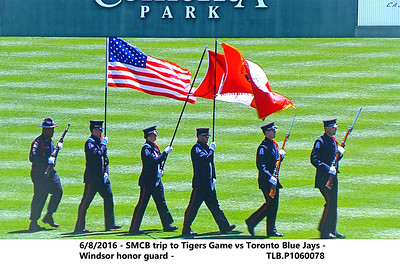 2016 Tigers game
