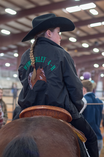 Hays County Horse Show, 2018