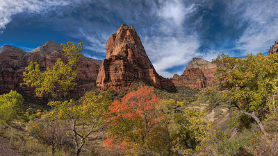 Vegas, Zion, Death Valley, Grand Canyon