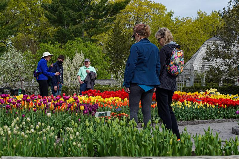 Arboretum nw1-29.JPG