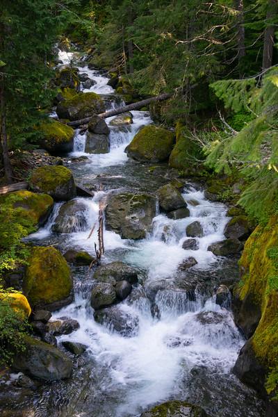 Cascades on Nickel Creek, Rainier National Park, WA