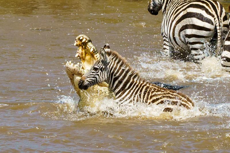 Kenya 2015-03794.jpg