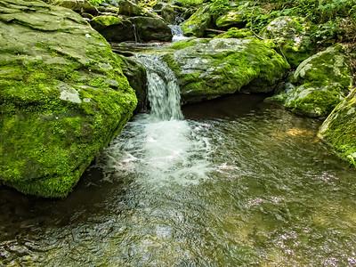 Shenandoah N P & River