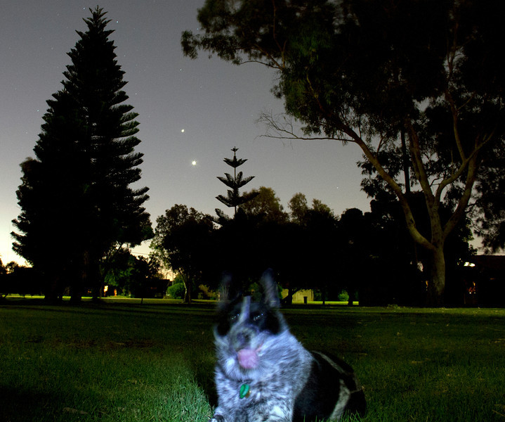 Venus (bottom) and Jupiter at the Park with Cinders - 13/03/2012