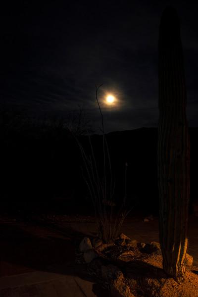 Arizona_080617_0861.jpg