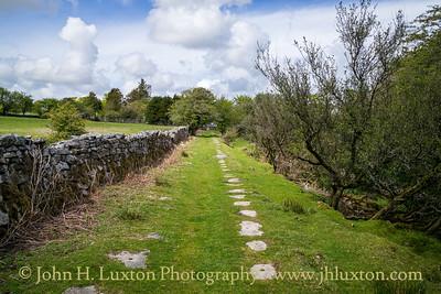 Liskeard and Caradon Railway: Minions to Ponton's Piece
