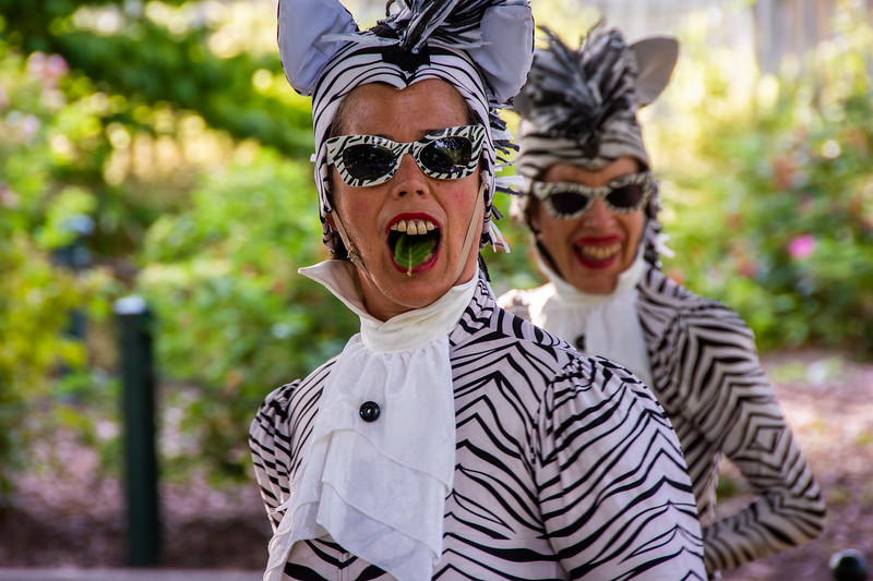 Festivale Roving Performers Small-15.jpg