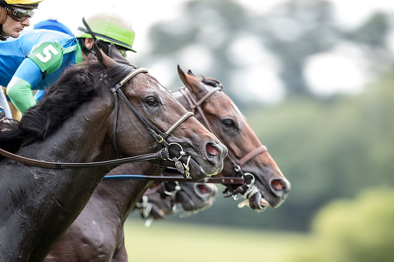Demolition (Blame) going by the first time in an allowance race at Kentucky Downs on 9.8.2018.