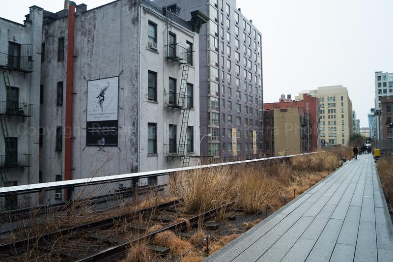 NYC-144.jpg