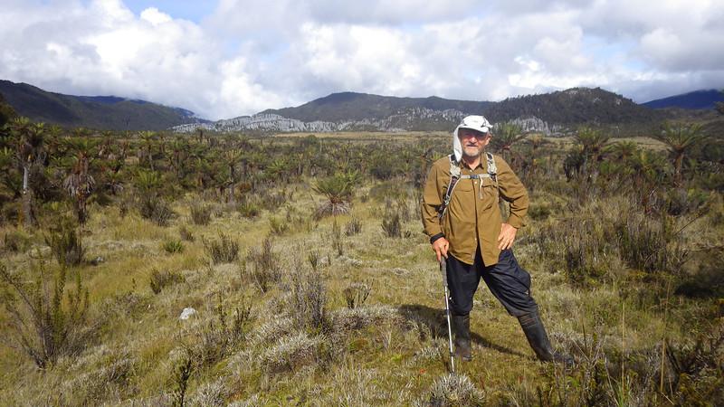 Papua savanna 3