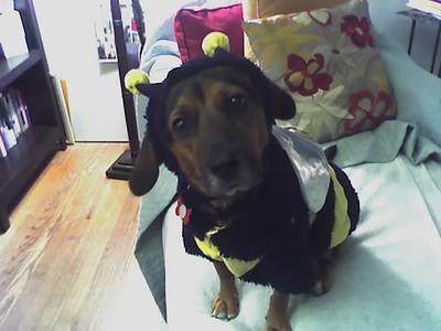 MOLLY & MAX (halloween 2007)