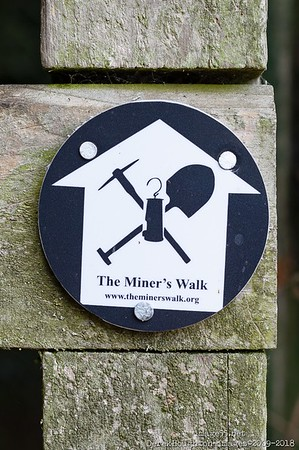 MinersWalk