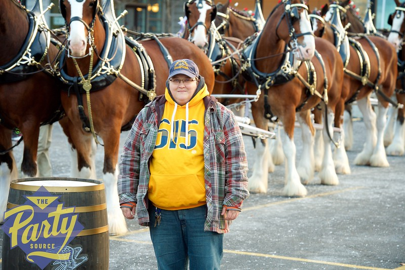 Clydesdale Portraits 226.jpg