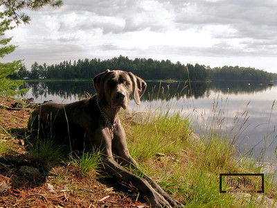 Boundary Waters 2009
