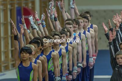 2016 Metropolitan  Boys Gymnastics