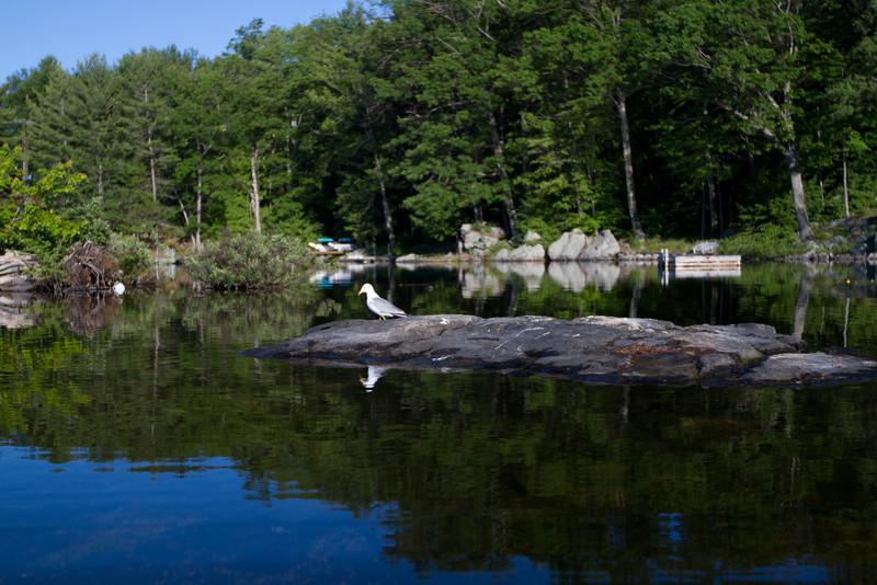 June 11 Stoney Lake Glass_0407.jpg