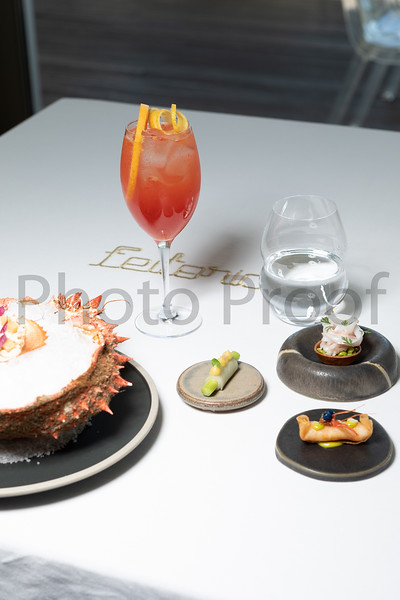 BIRDSONG Schweppes Cocktails 029.jpg