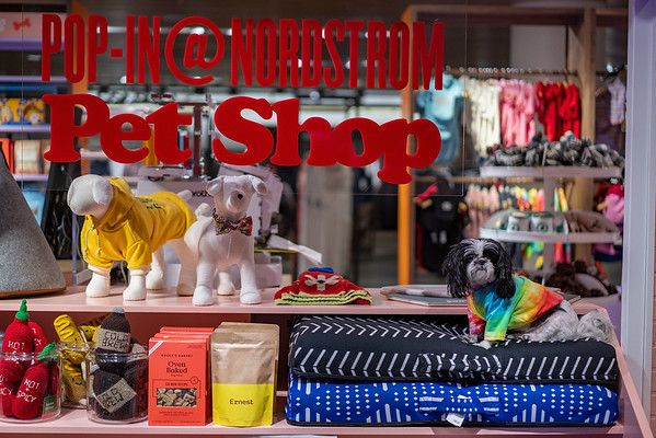 Pet Shop Feb 2020