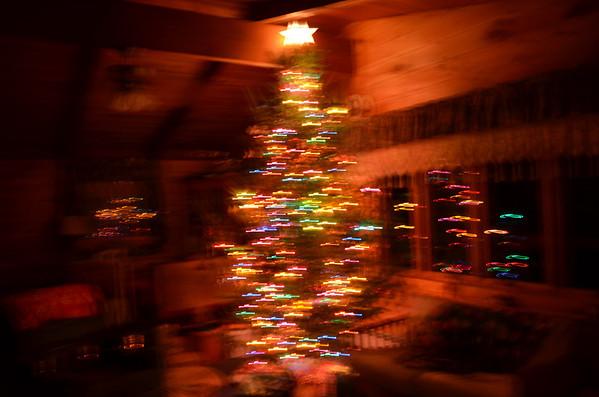 Christmas 2012 • Cedar Eden