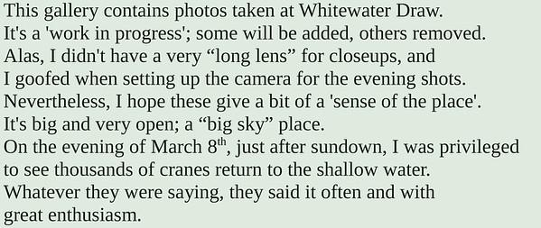 Whitewater Draw