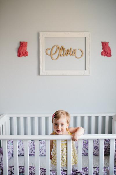 Olivia's First Birthday