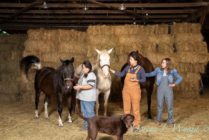 Horse family portrait_106.jpg