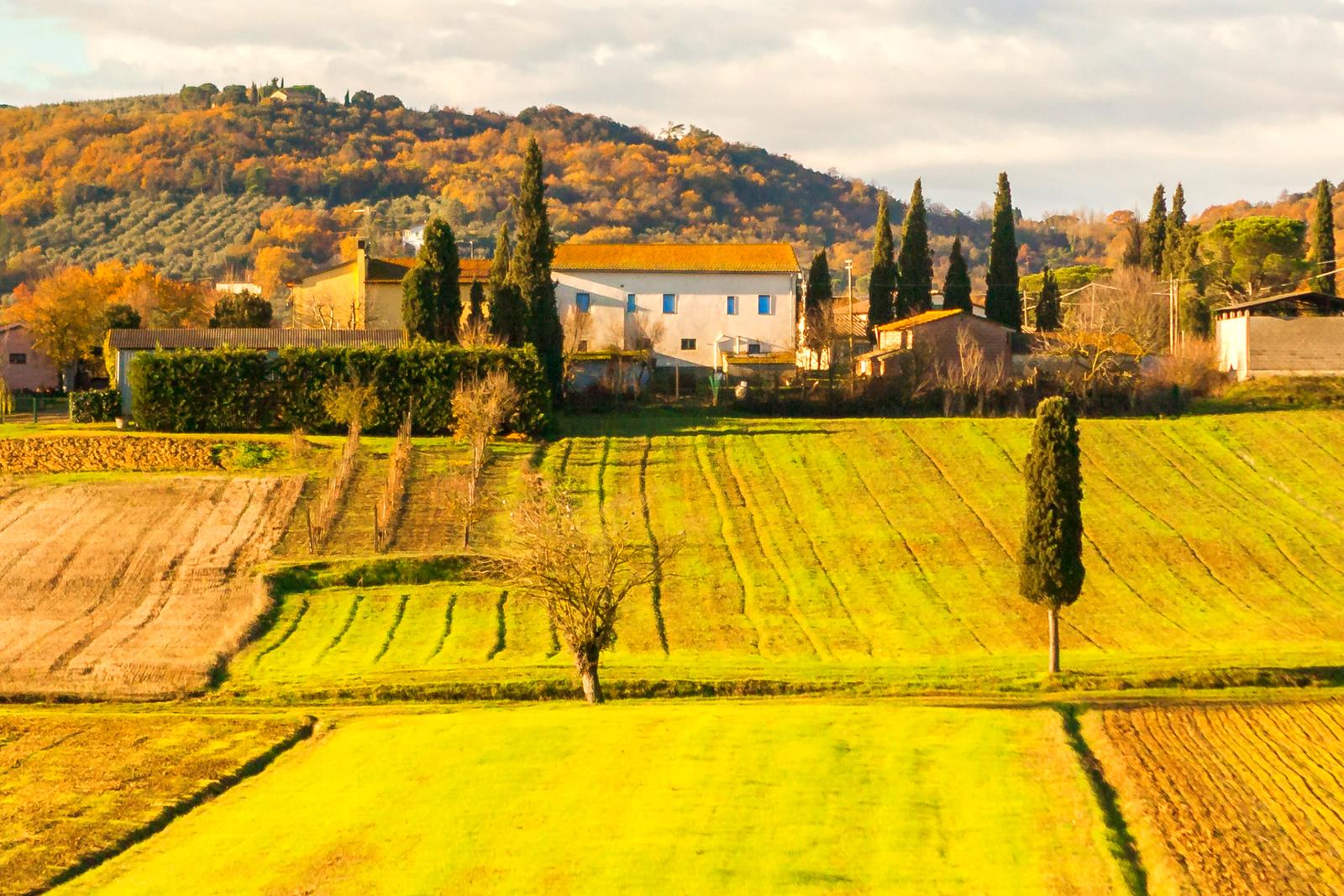 意大利路途,农村的状况