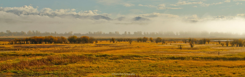 DF.1882 - fog over marsh, Kootenai National Wildlife Refuge, ID.